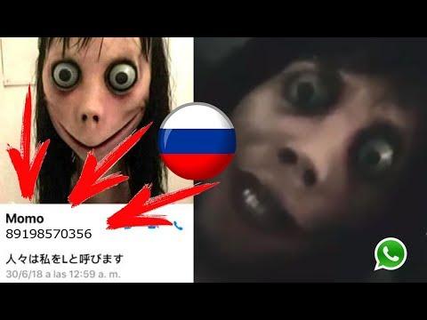 Настоящий номер Момо в России, который отвечает